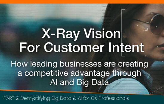 X-Ray Vision For Customer Intent